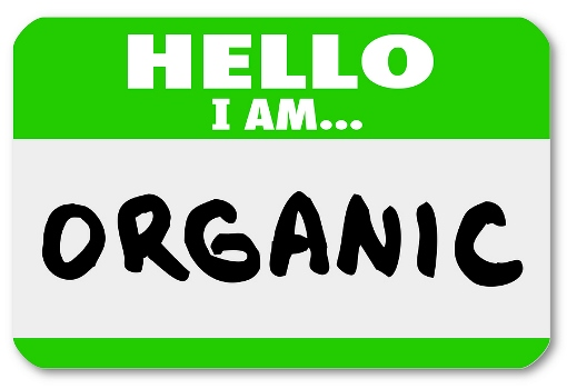 image to illustrate organic search blog post